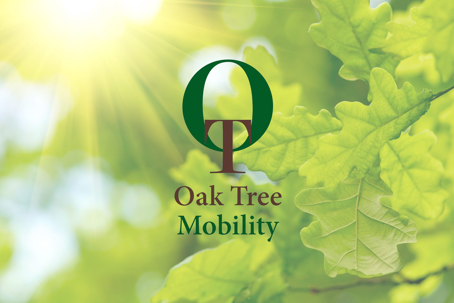 Oak Tree coronavirus update